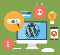 WordPress: The Ultimate Star for Your Business